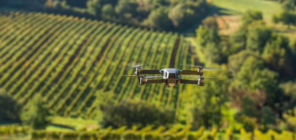 viticoltura digitale 2018